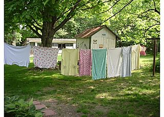 Clothesline%20color%205x7l